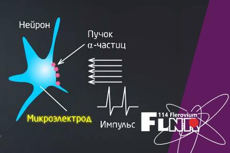 Course Image  Физика тяжелых ионов и высокие технологии